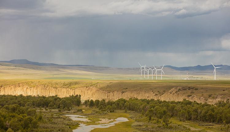 Descriptions de projets de carboneutralité soutenus par BMO